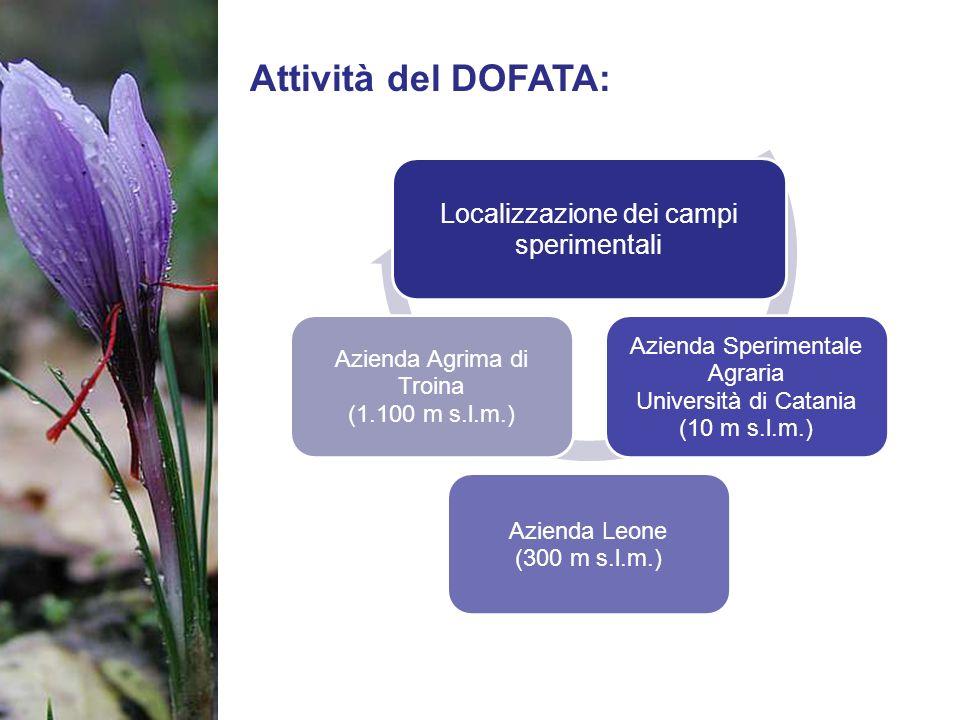 Attività del DOFATA: Localizzazione dei campi sperimentali
