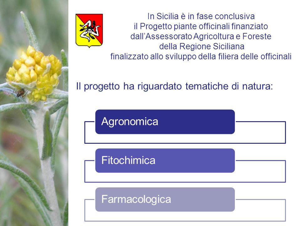Il progetto ha riguardato tematiche di natura: