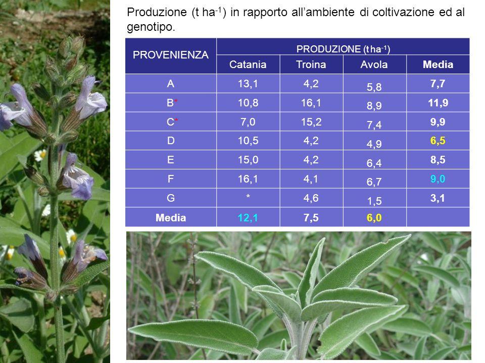 Produzione (t ha-1) in rapporto all'ambiente di coltivazione ed al genotipo.