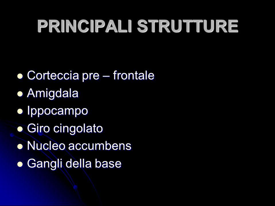 PRINCIPALI STRUTTURE Corteccia pre – frontale Amigdala Ippocampo