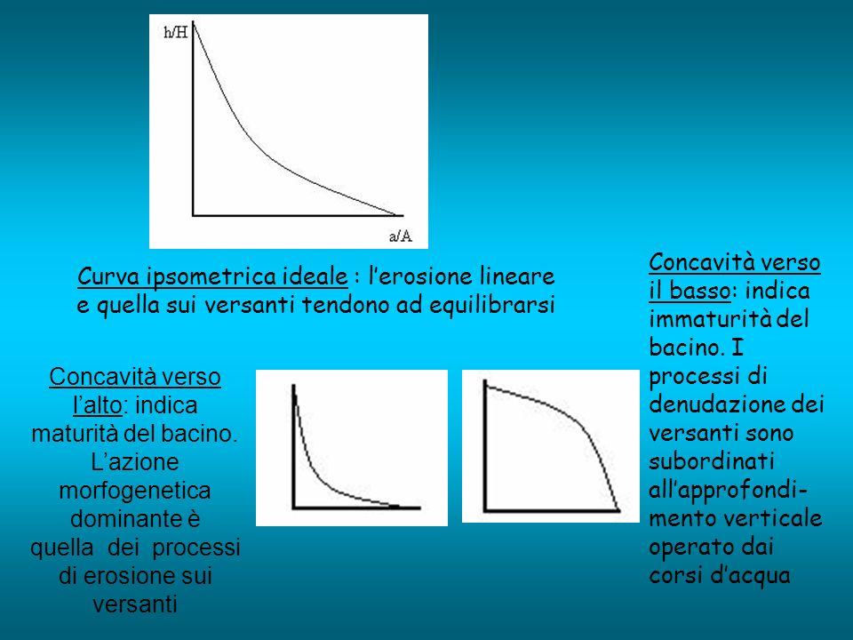 Concavità verso il basso: indica immaturità del bacino