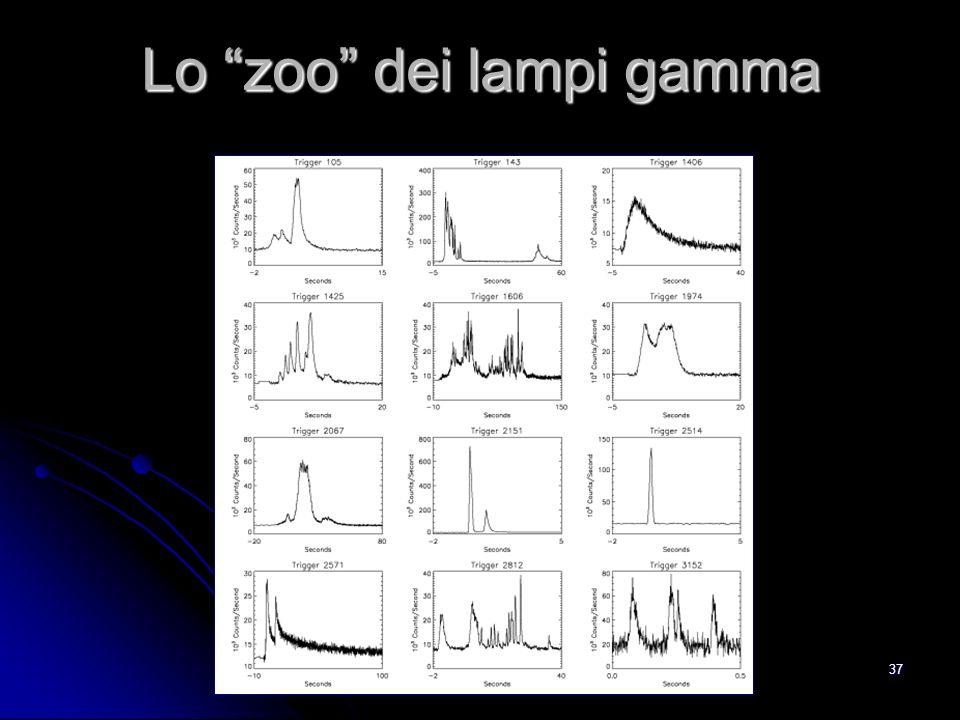 Lo zoo dei lampi gamma