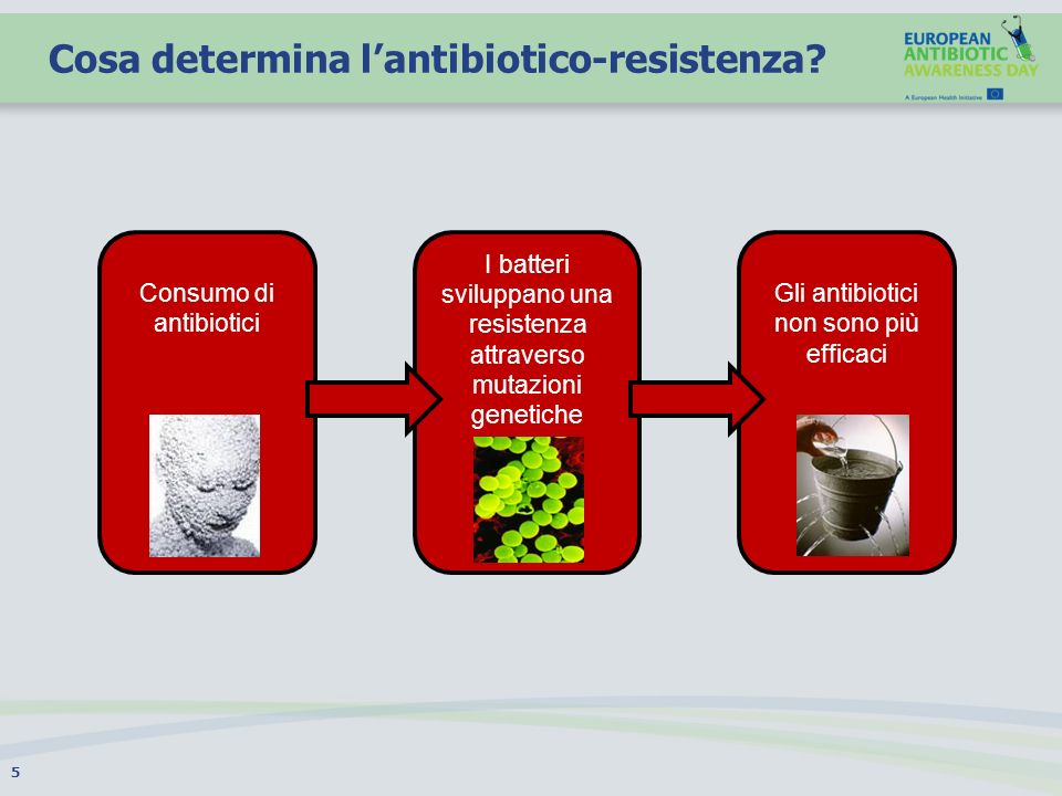Cosa determina l'antibiotico-resistenza