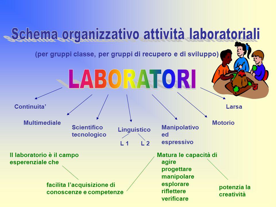 Schema organizzativo attività laboratoriali