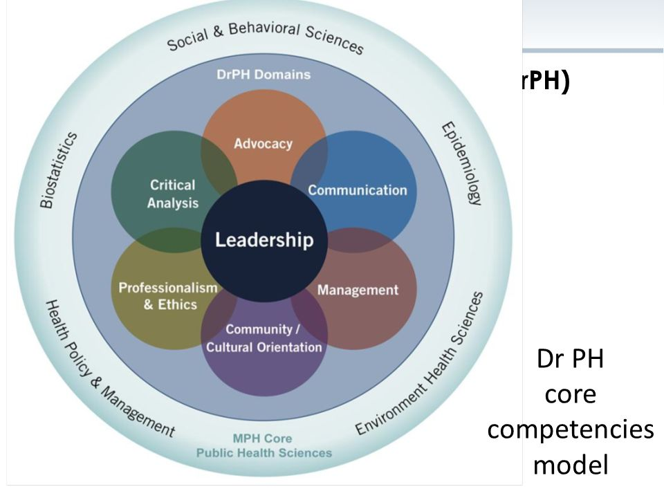 Dr PH core competencies model