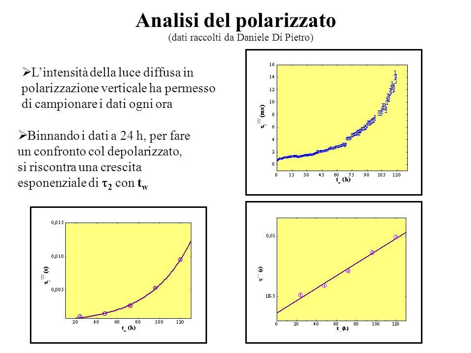 Analisi del polarizzato