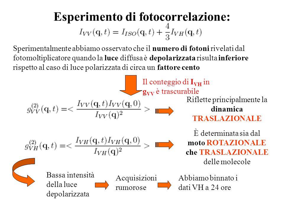 Esperimento di fotocorrelazione: