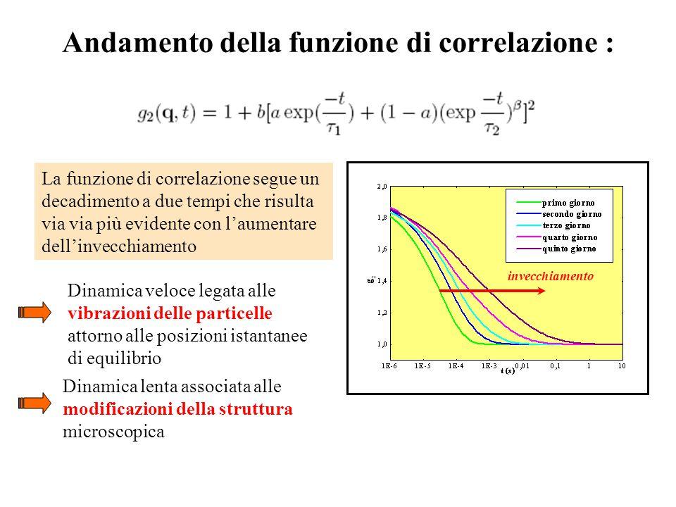 Andamento della funzione di correlazione :