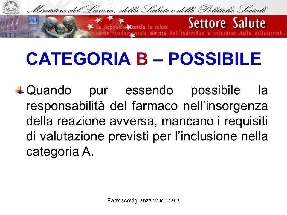 CATEGORIA B – POSSIBILE