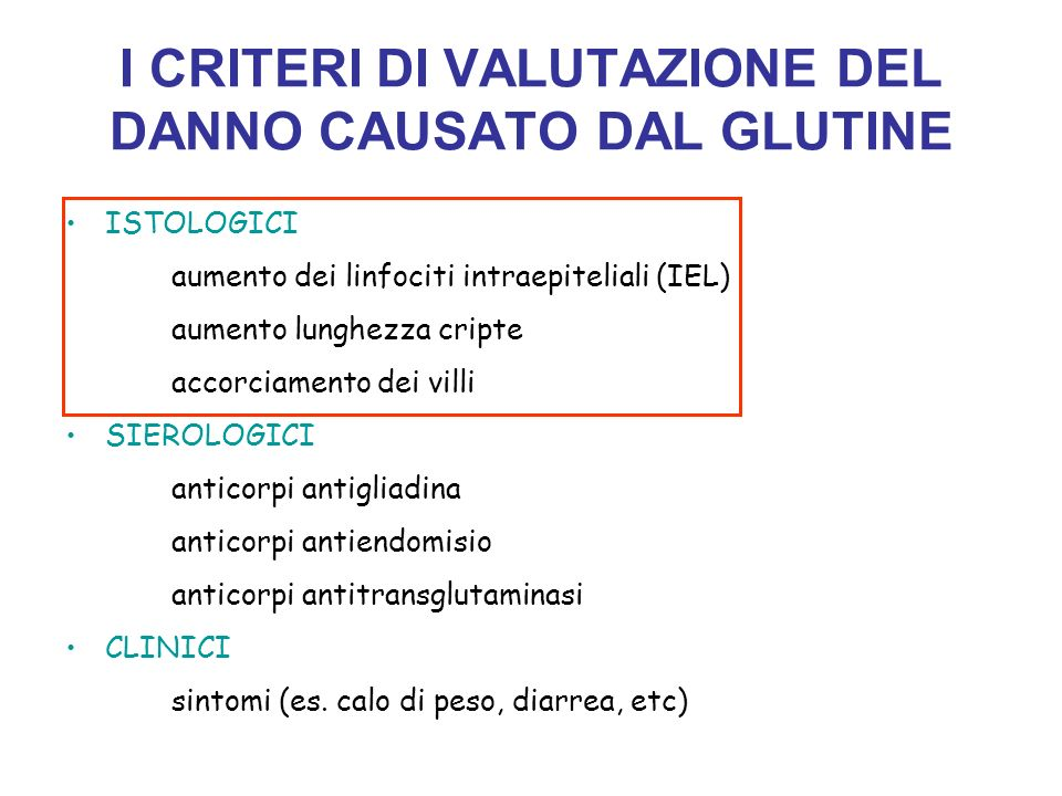 I CRITERI DI VALUTAZIONE DEL DANNO CAUSATO DAL GLUTINE