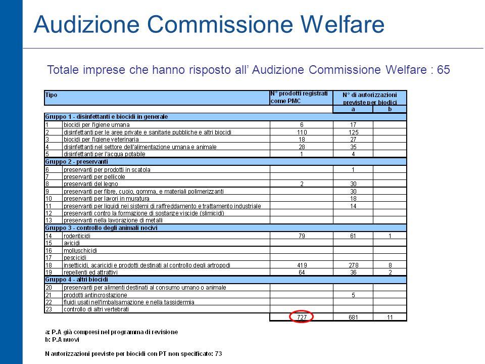 Audizione Commissione Welfare