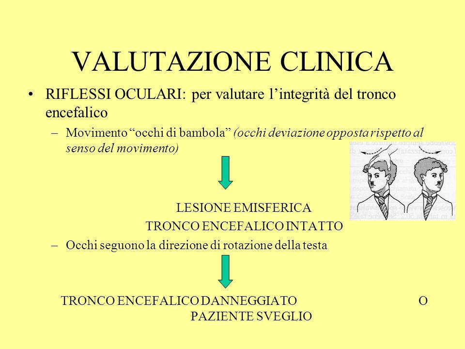 VALUTAZIONE CLINICA RIFLESSI OCULARI: per valutare l'integrità del tronco encefalico.