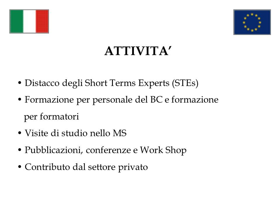 ATTIVITA' Distacco degli Short Terms Experts (STEs)