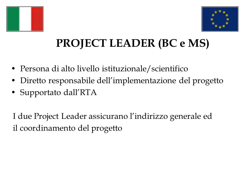 PROJECT LEADER (BC e MS)