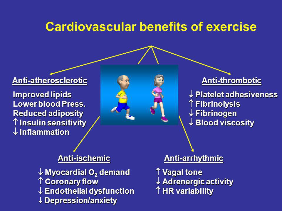 Cardiovascular benefits of exercise