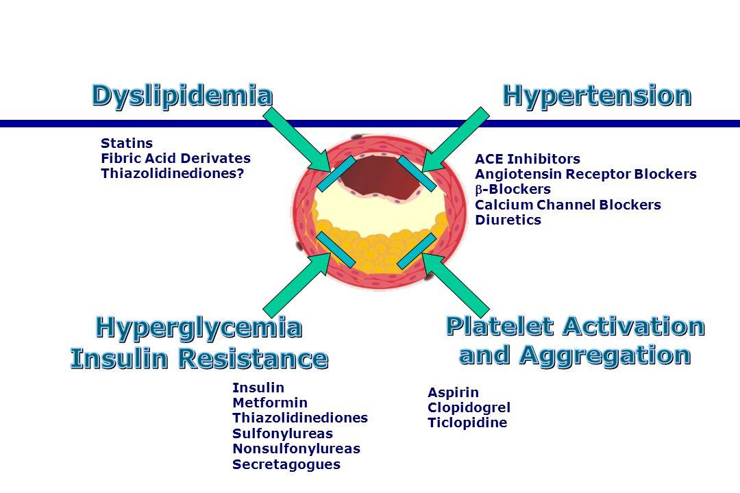 Dyslipidemia Hyperglycemia Insulin Resistance Hypertension