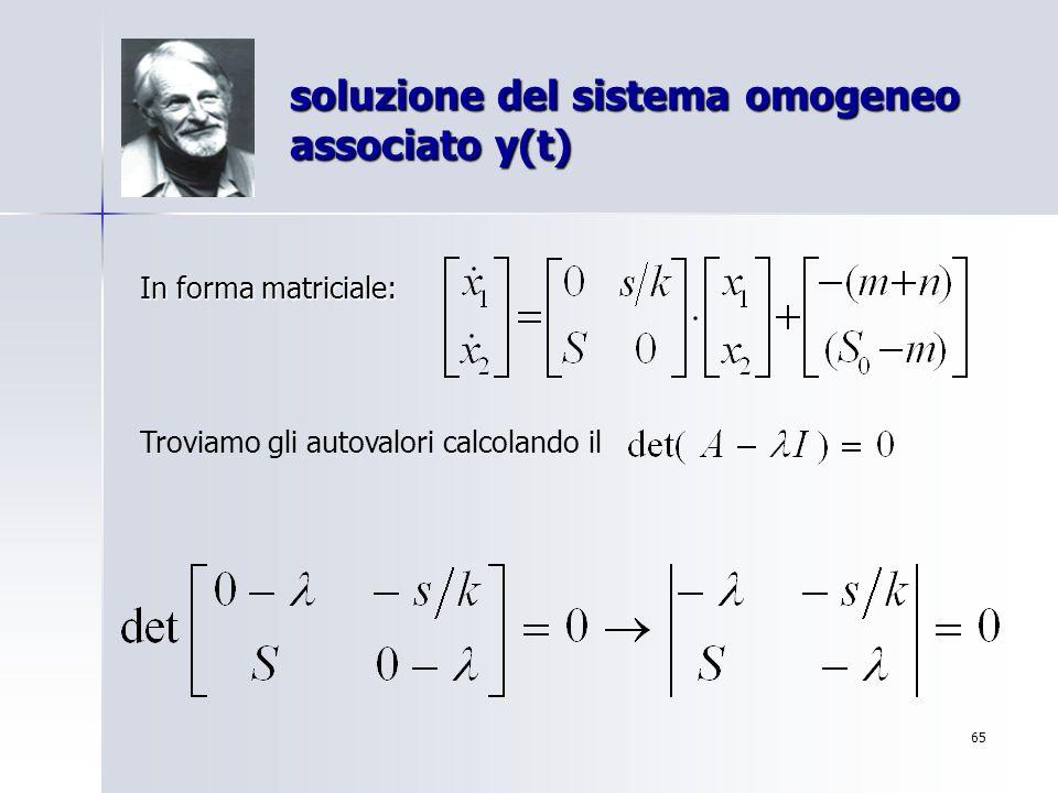 soluzione del sistema omogeneo associato y(t)