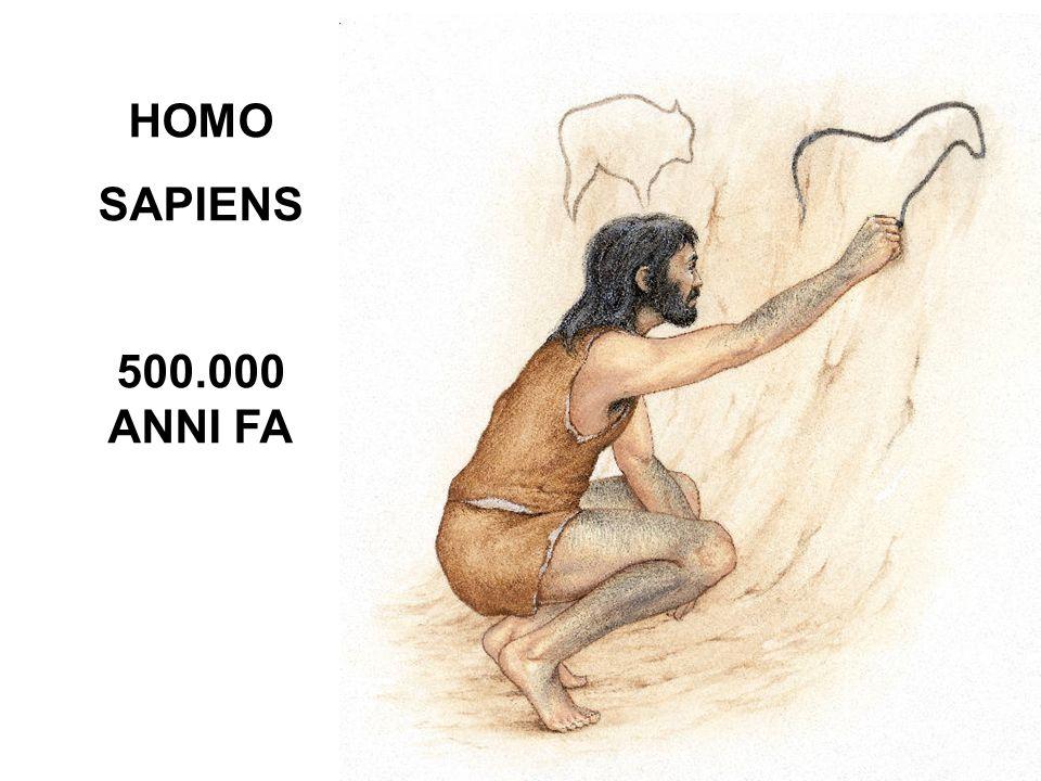 HOMO SAPIENS 500.000 ANNI FA
