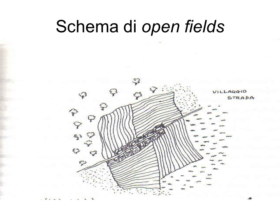 Schema di open fields