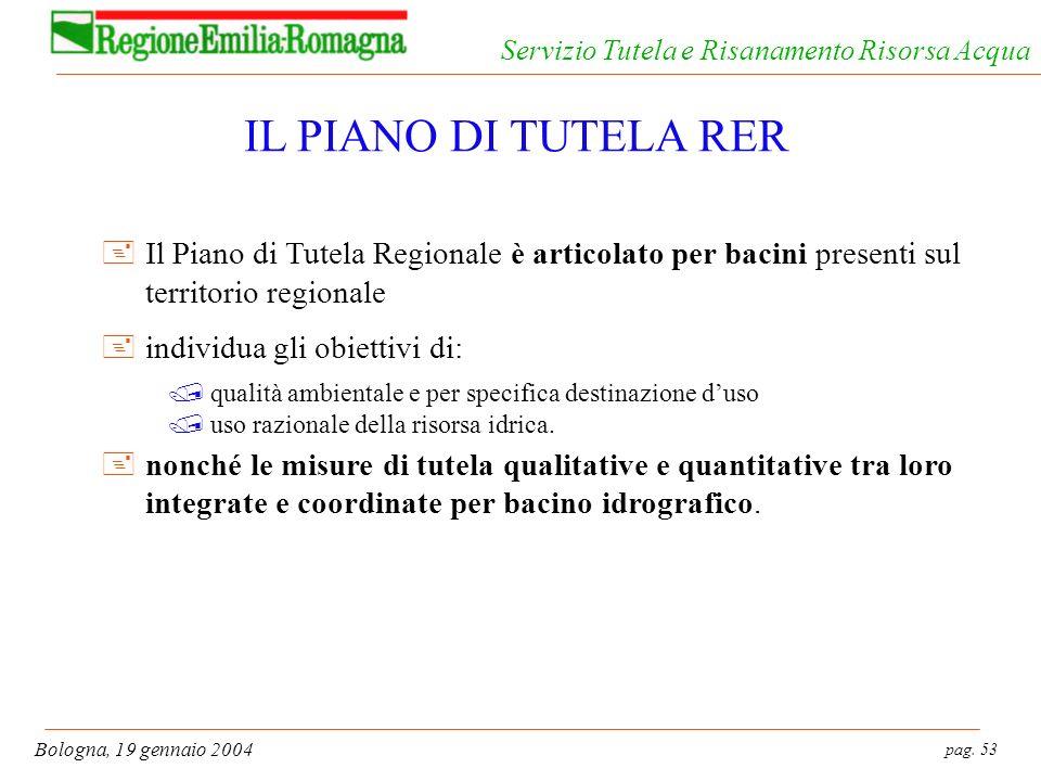 IL PIANO DI TUTELA RER Il Piano di Tutela Regionale è articolato per bacini presenti sul territorio regionale.