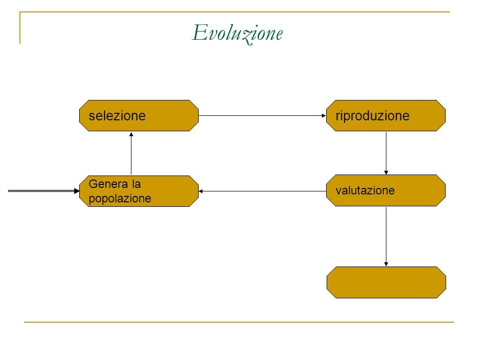Evoluzione selezione riproduzione Genera la popolazione valutazione