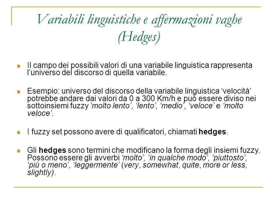 Variabili linguistiche e affermazioni vaghe (Hedges)
