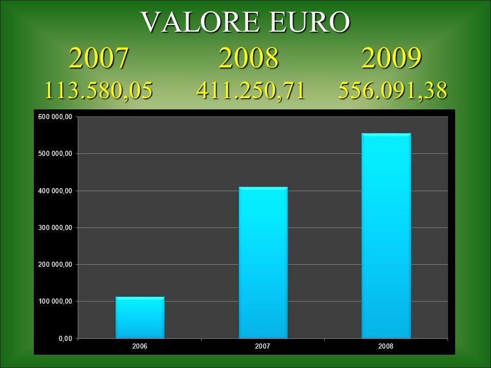 VALORE EURO 2007 2008 2009 113.580,05 411.250,71 556.091,38