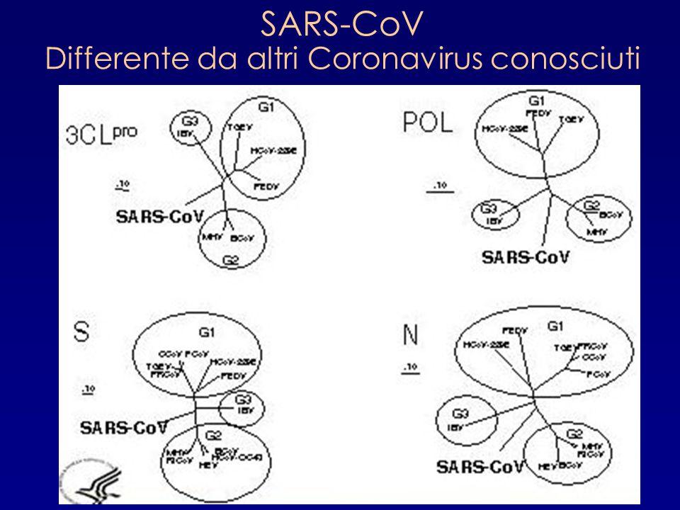 Differente da altri Coronavirus conosciuti