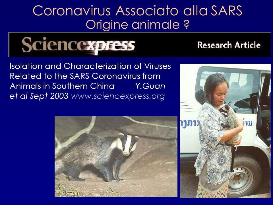 Coronavirus Associato alla SARS