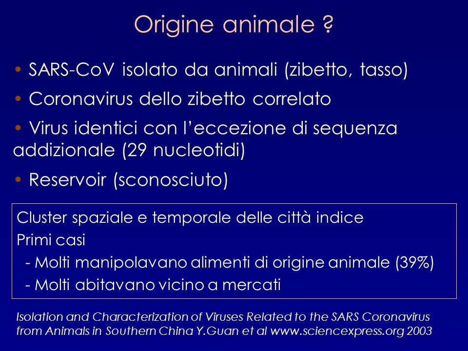 Origine animale SARS-CoV isolato da animali (zibetto, tasso)