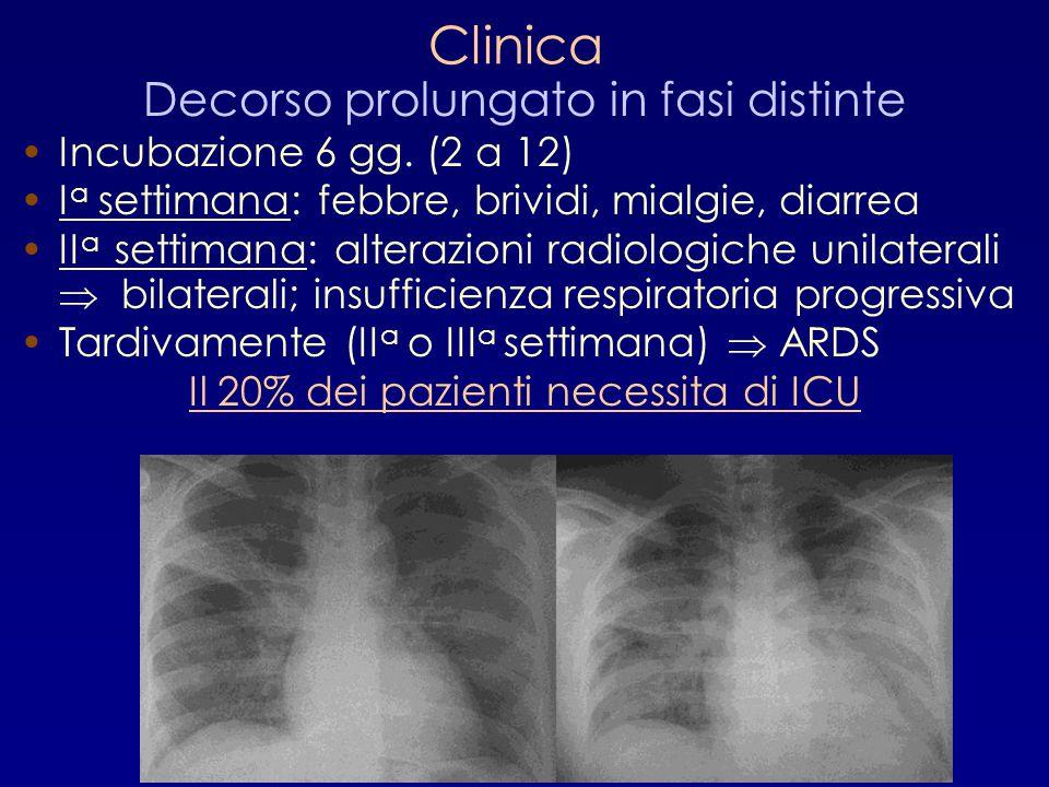 Clinica Decorso prolungato in fasi distinte Incubazione 6 gg. (2 a 12)