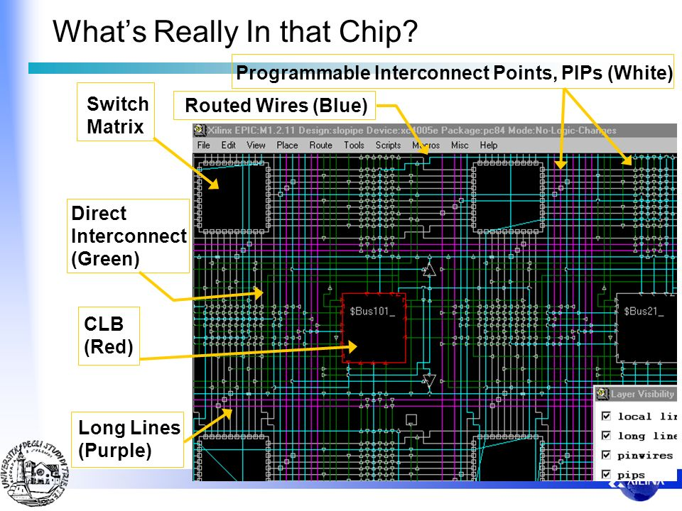 What's Really In that Chip