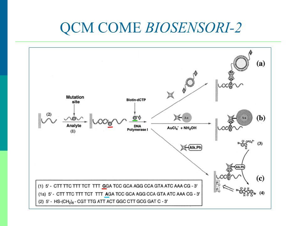 QCM COME BIOSENSORI-2