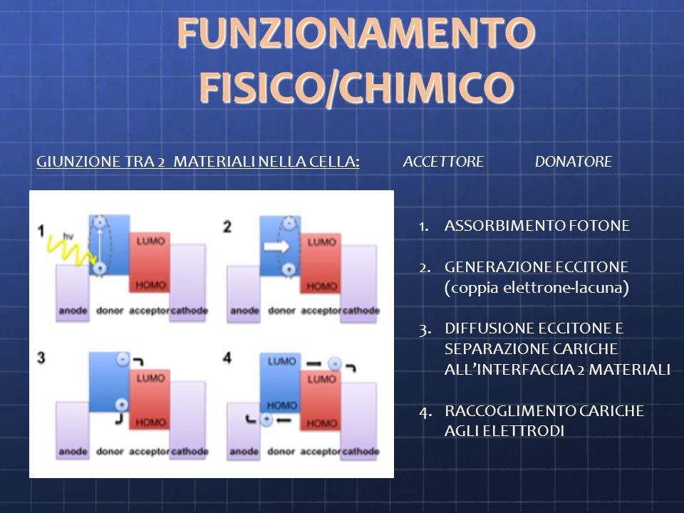 FUNZIONAMENTO FISICO/CHIMICO