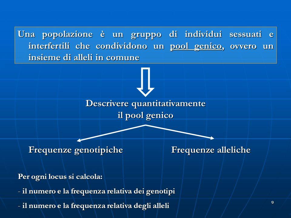 Descrivere quantitativamente il pool genico