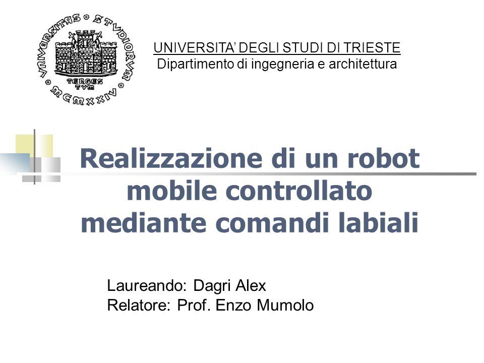 Realizzazione di un robot mobile controllato mediante comandi labiali