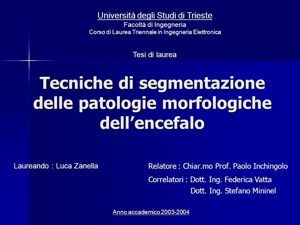 Tecniche di segmentazione delle patologie morfologiche dell'encefalo