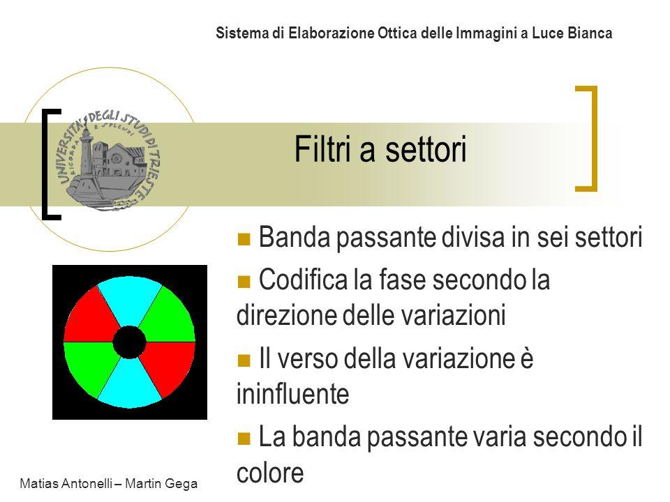 Sistema di Elaborazione Ottica delle Immagini a Luce Bianca