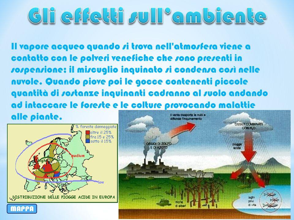 Gli effetti sull'ambiente