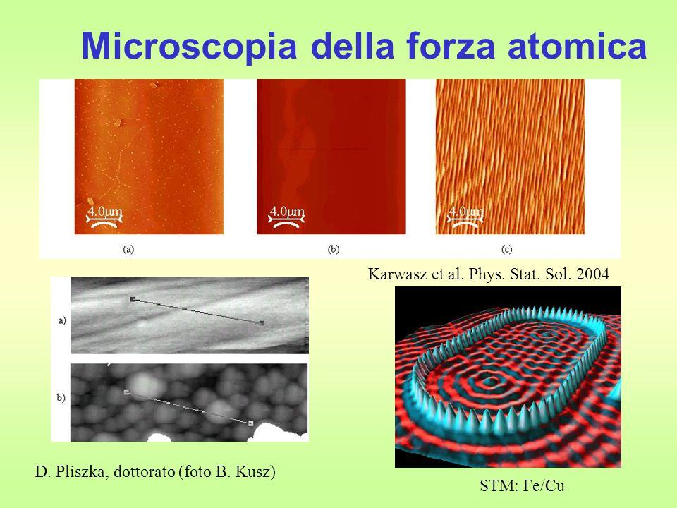 Microscopia della forza atomica