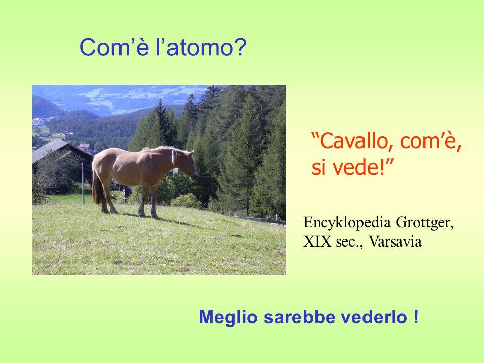 Com'è l'atomo Cavallo, com'è, si vede! Meglio sarebbe vederlo !