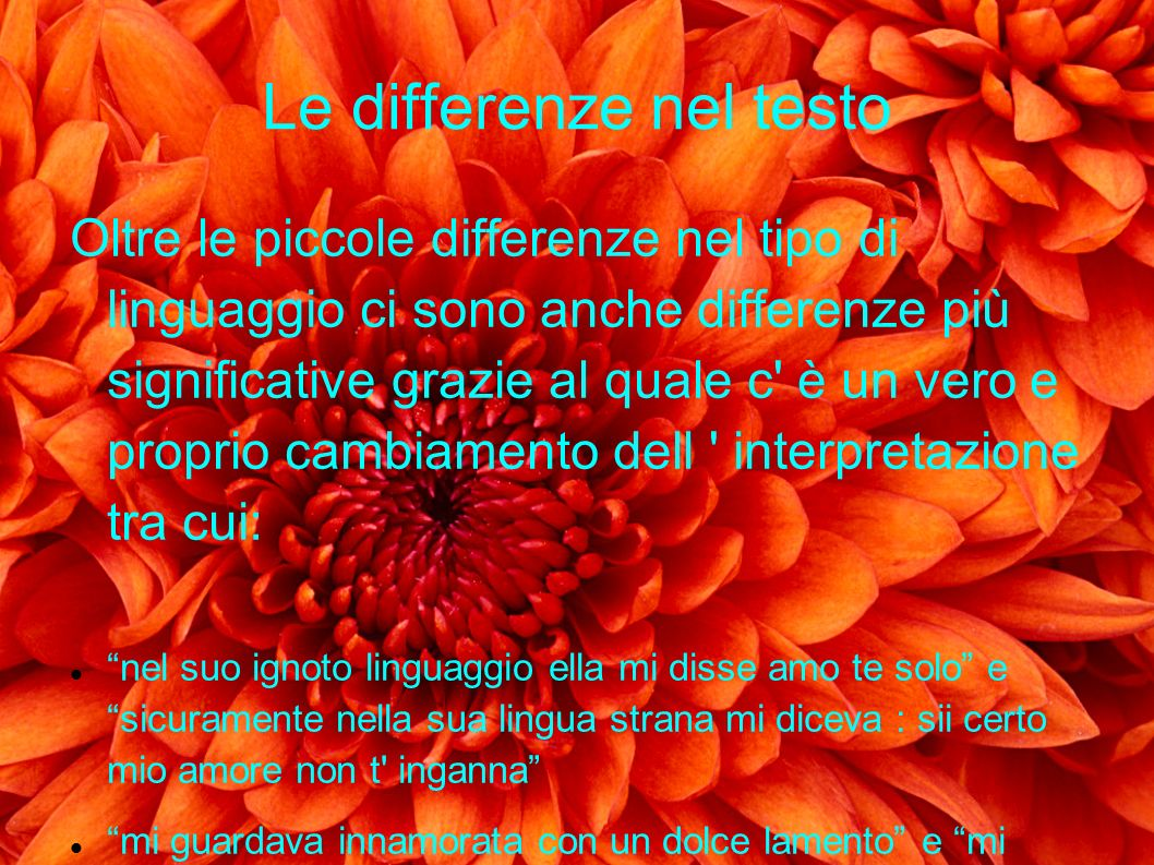 Le differenze nel testo