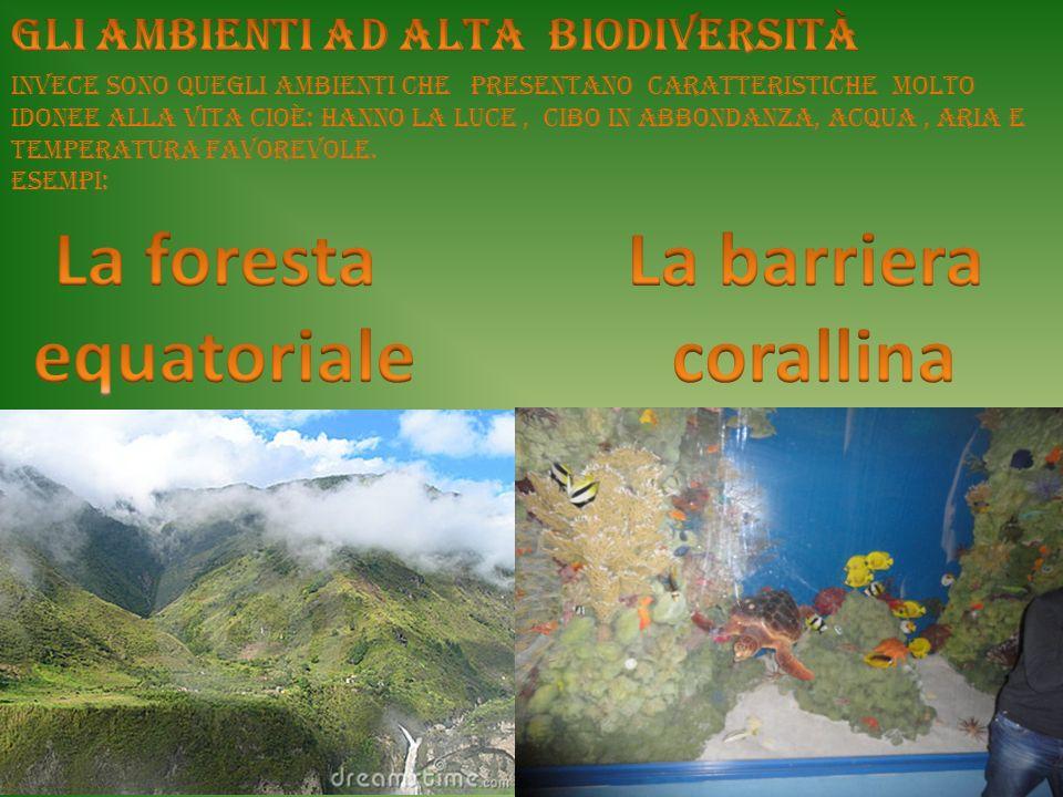 La foresta equatoriale La barriera corallina