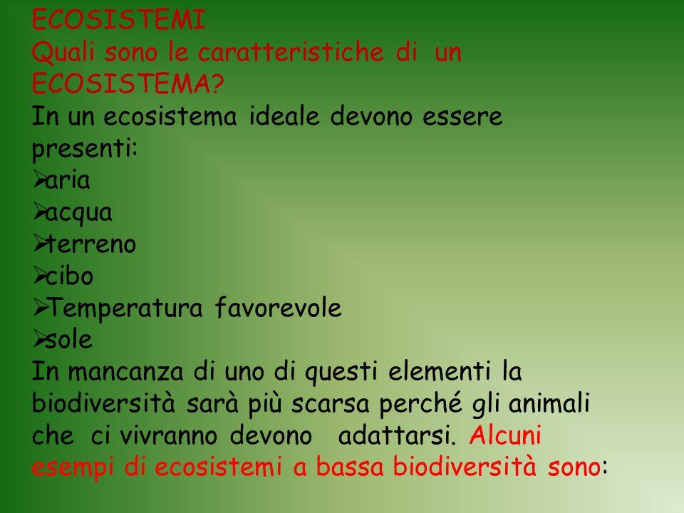 ECOSISTEMI Quali sono le caratteristiche di un ECOSISTEMA In un ecosistema ideale devono essere presenti: