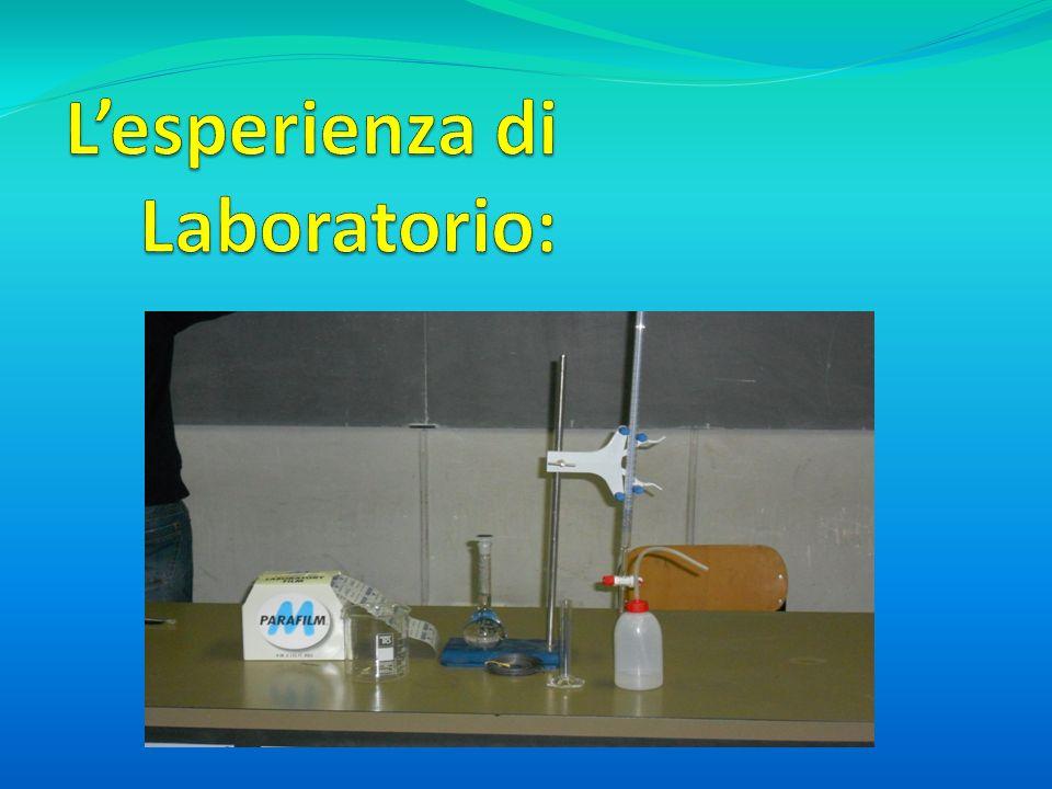 L'esperienza di Laboratorio: