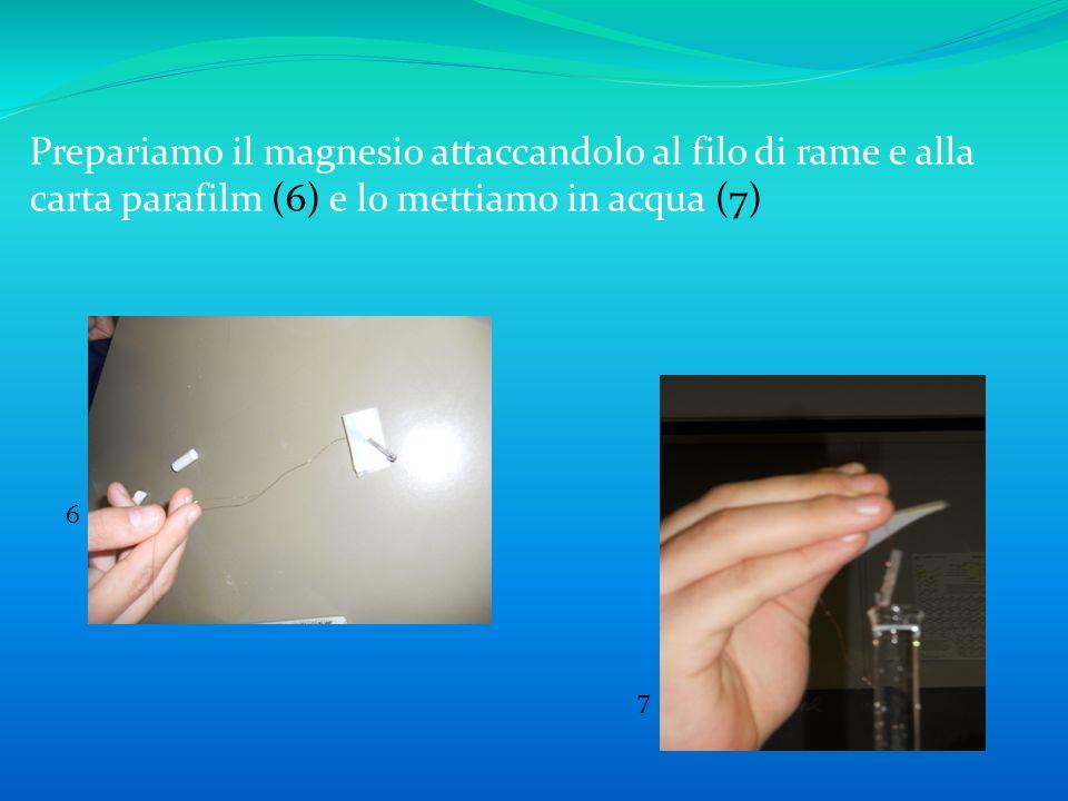 Prepariamo il magnesio attaccandolo al filo di rame e alla carta parafilm (6) e lo mettiamo in acqua (7)