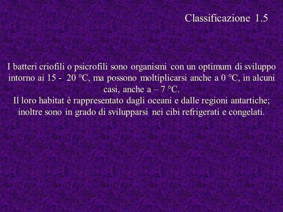 Classificazione 1.5