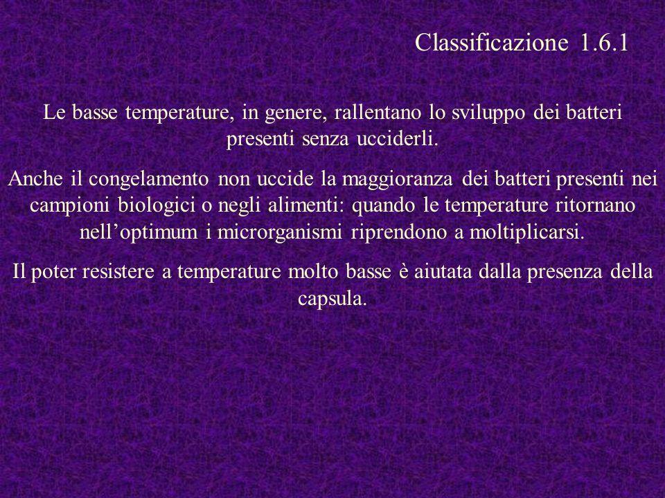 Classificazione 1.6.1 Le basse temperature, in genere, rallentano lo sviluppo dei batteri presenti senza ucciderli.