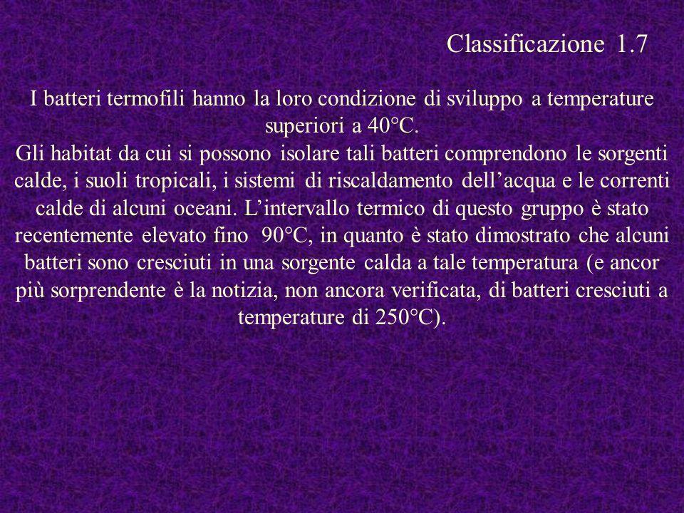 Classificazione 1.7 I batteri termofili hanno la loro condizione di sviluppo a temperature superiori a 40°C.