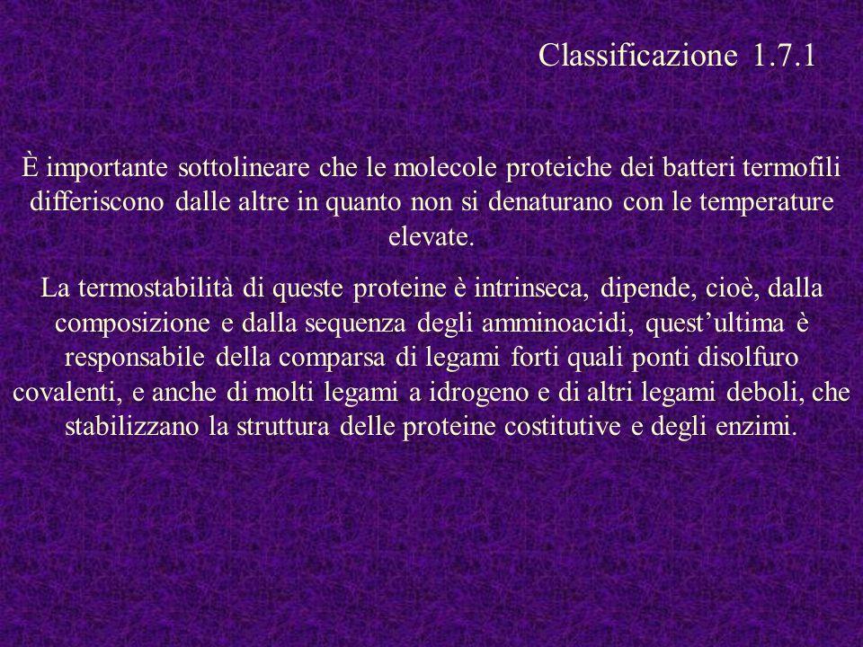 Classificazione 1.7.1